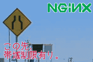 nginx band width