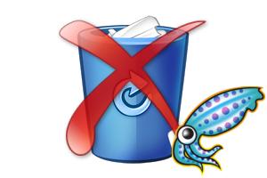 squid cache remove