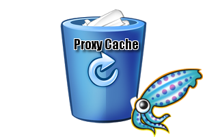 squid proxy cache
