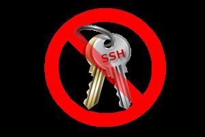 ssh public key